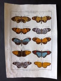 Diderot C1790 Antique Hand Col Print. Butterflies 20